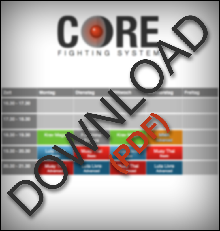 Lade dir den Core Fighting Systems Trainingsplan als PDF jetzt herunter!